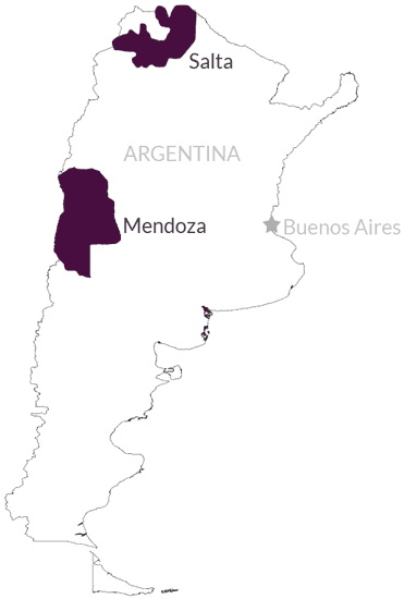 Overview of Vine Connections wine regions in Argentina