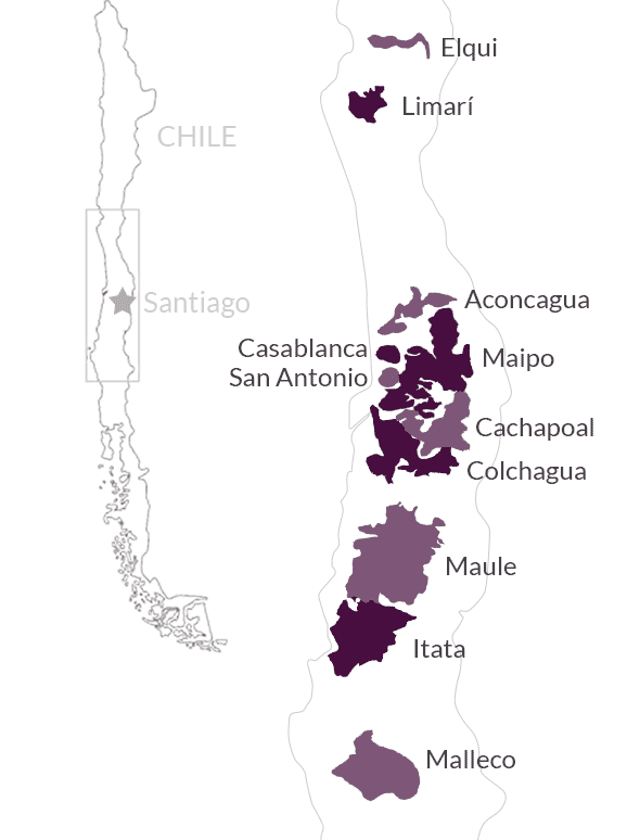 Overview of Vine Connections wine regions in Chile
