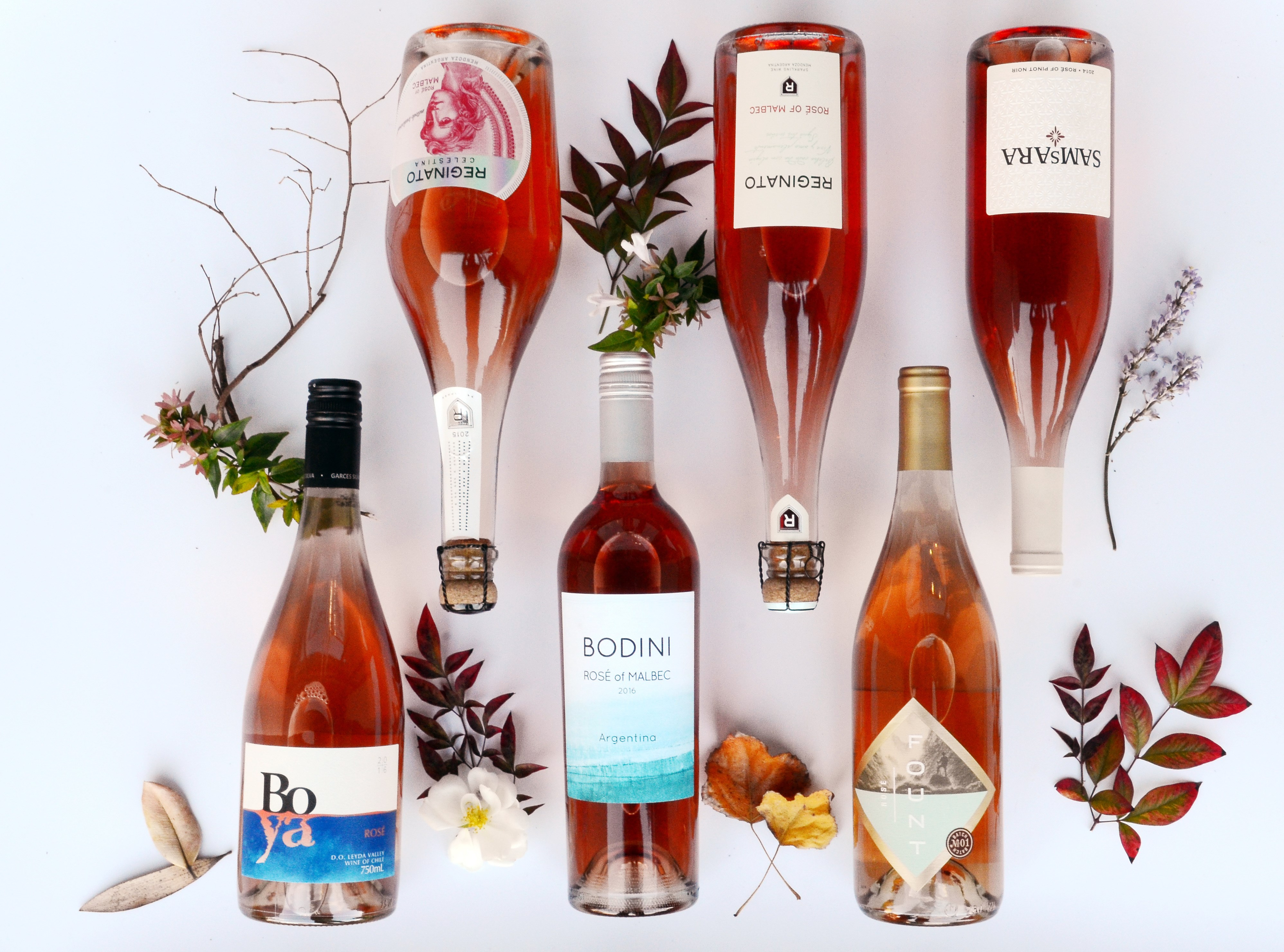 Rosé All Day (And All Year)!